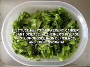 lettuceslide